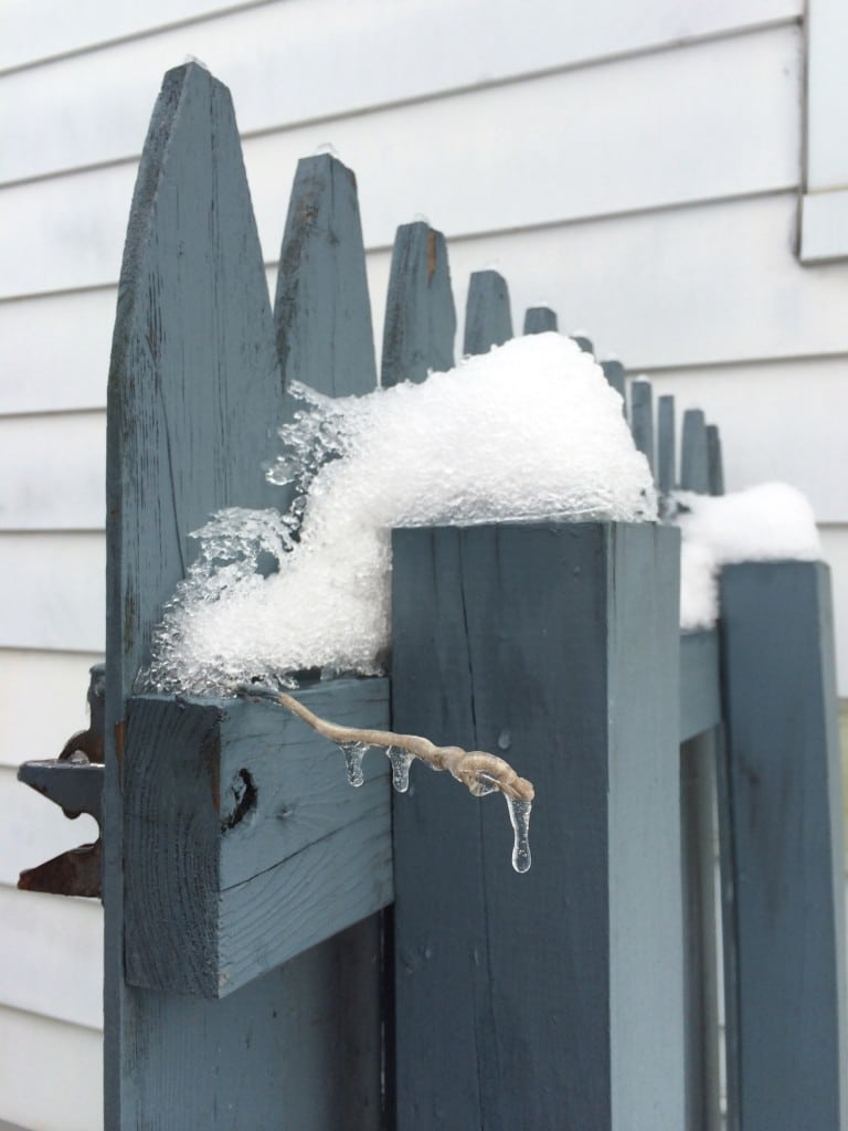 snow on the gate
