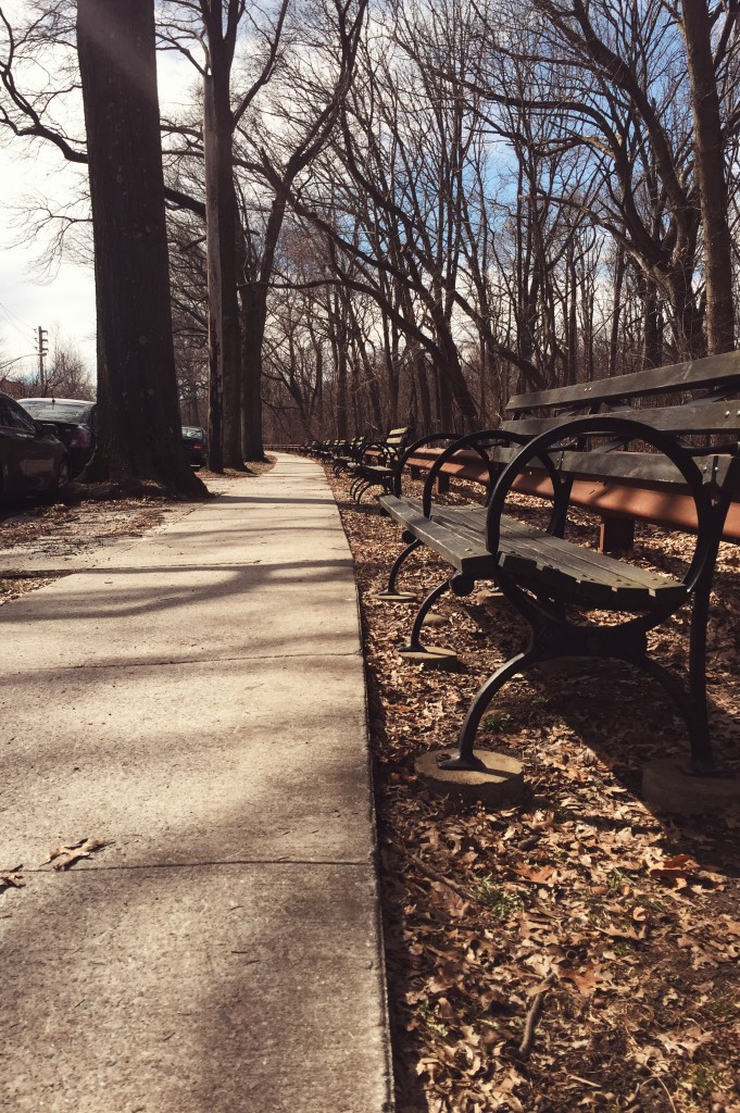 park benches near street