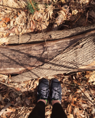 running shoes woods