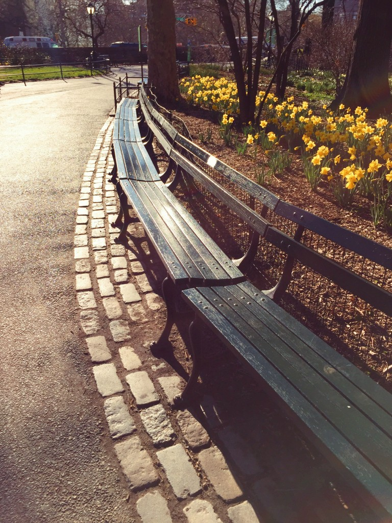 park benches and flowers nyc