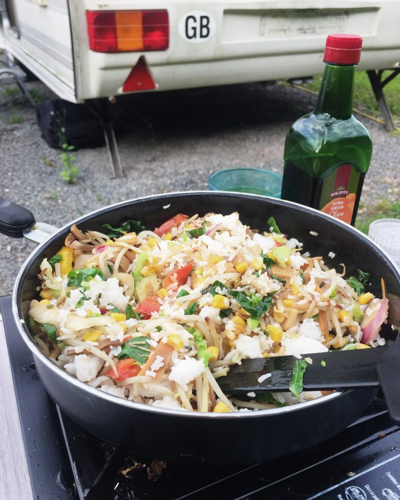 camp stove stir fry