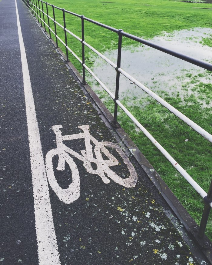 bicycle lane path over water with green moss