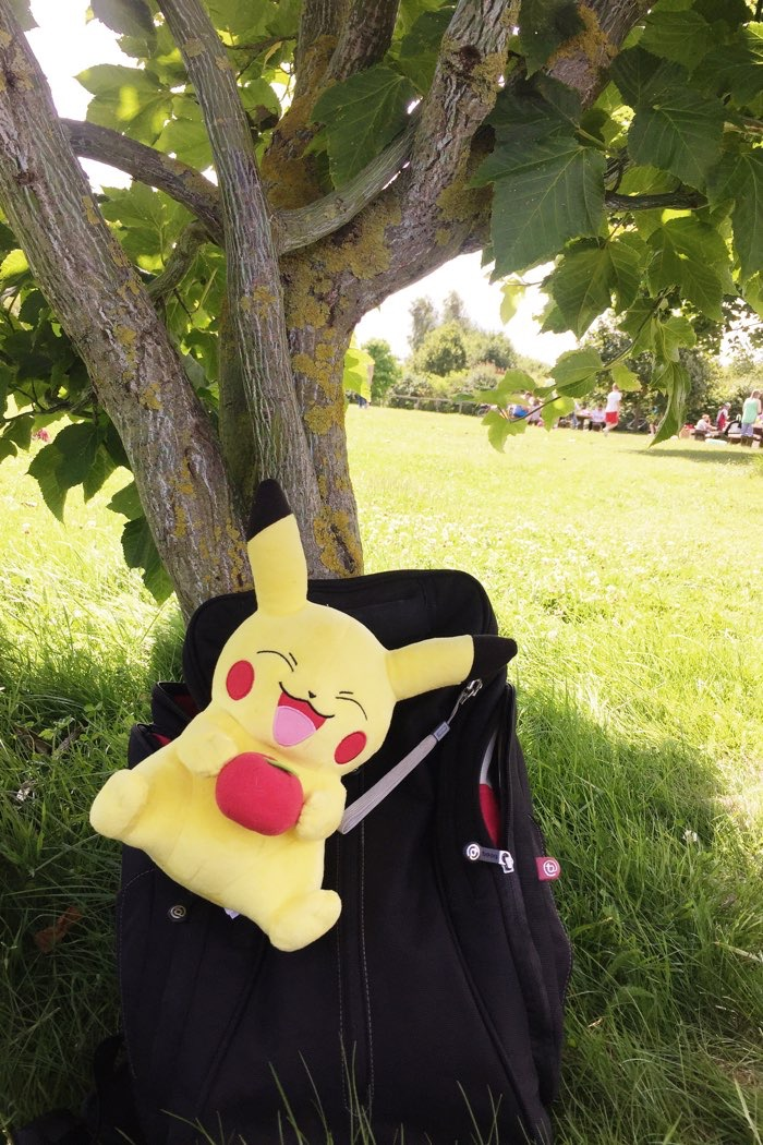 pikachu backpack park