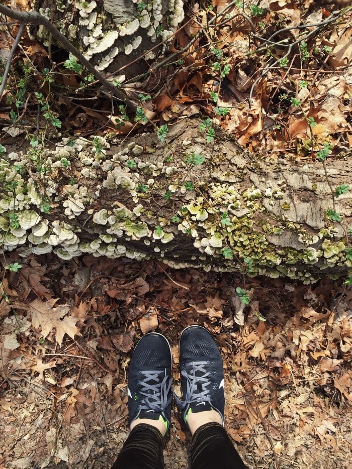 running shoes log moss