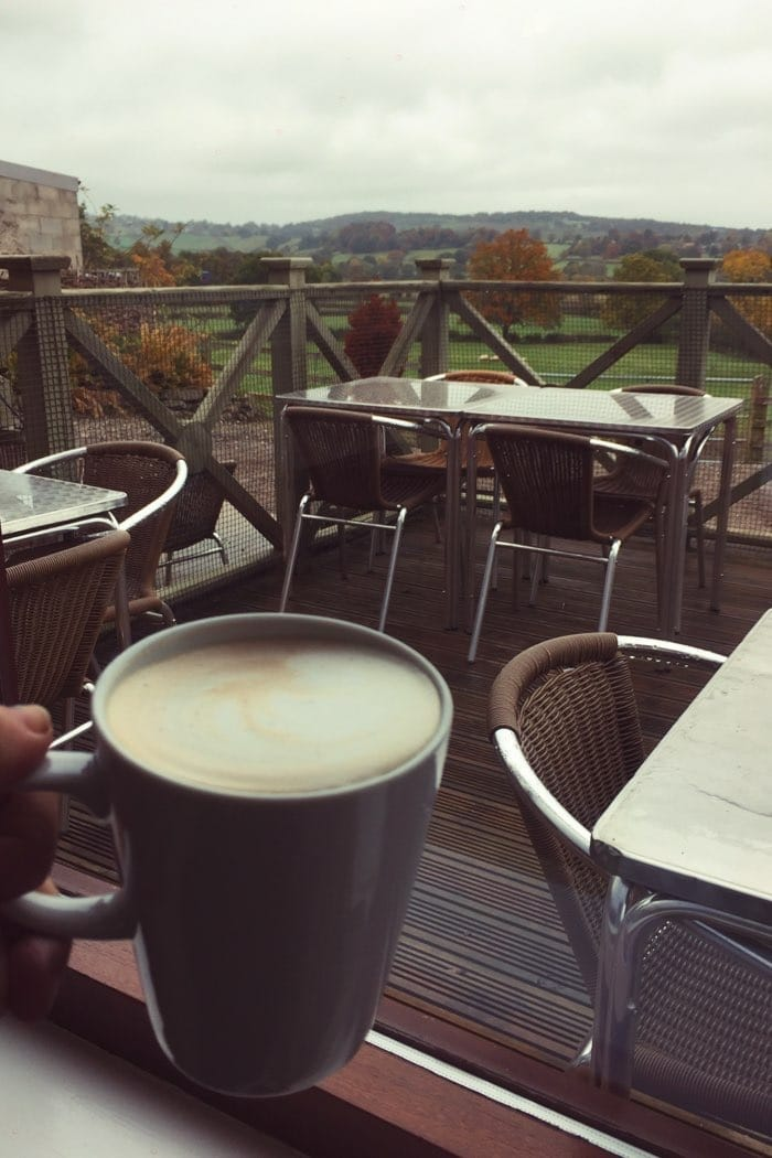 coffee at farm in fall