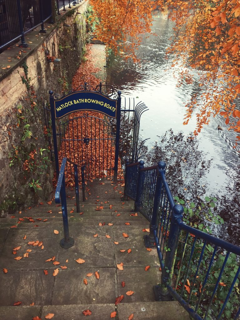 gate near water fall leaves