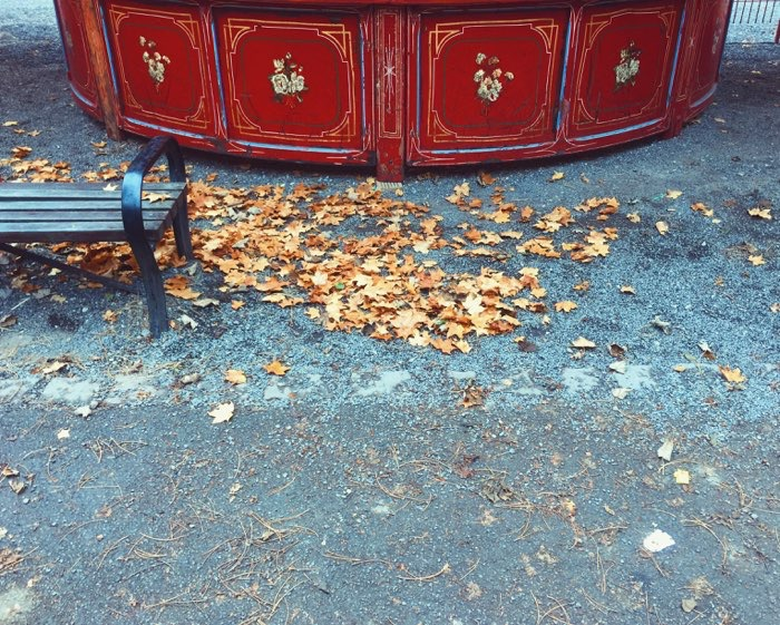 leaves near carnival ride