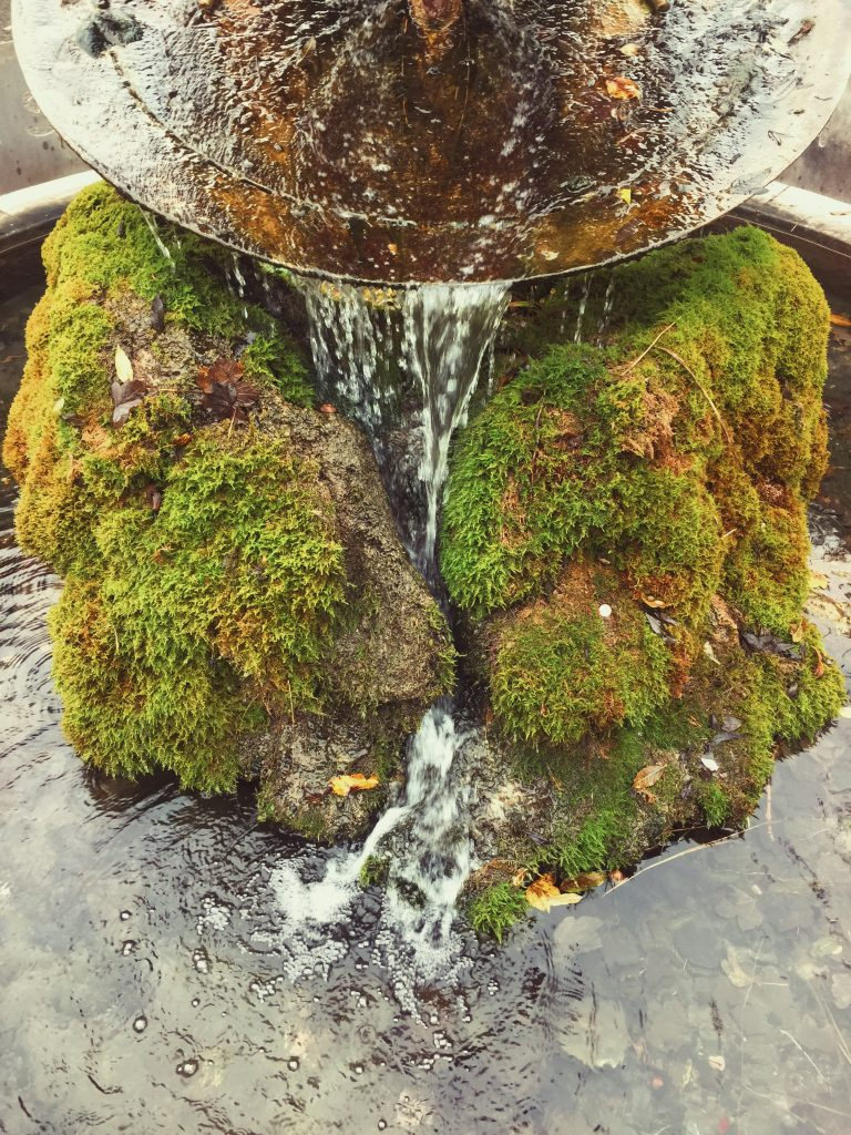 moss covered fountain