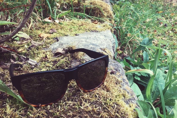 sunglasses on mossy rock