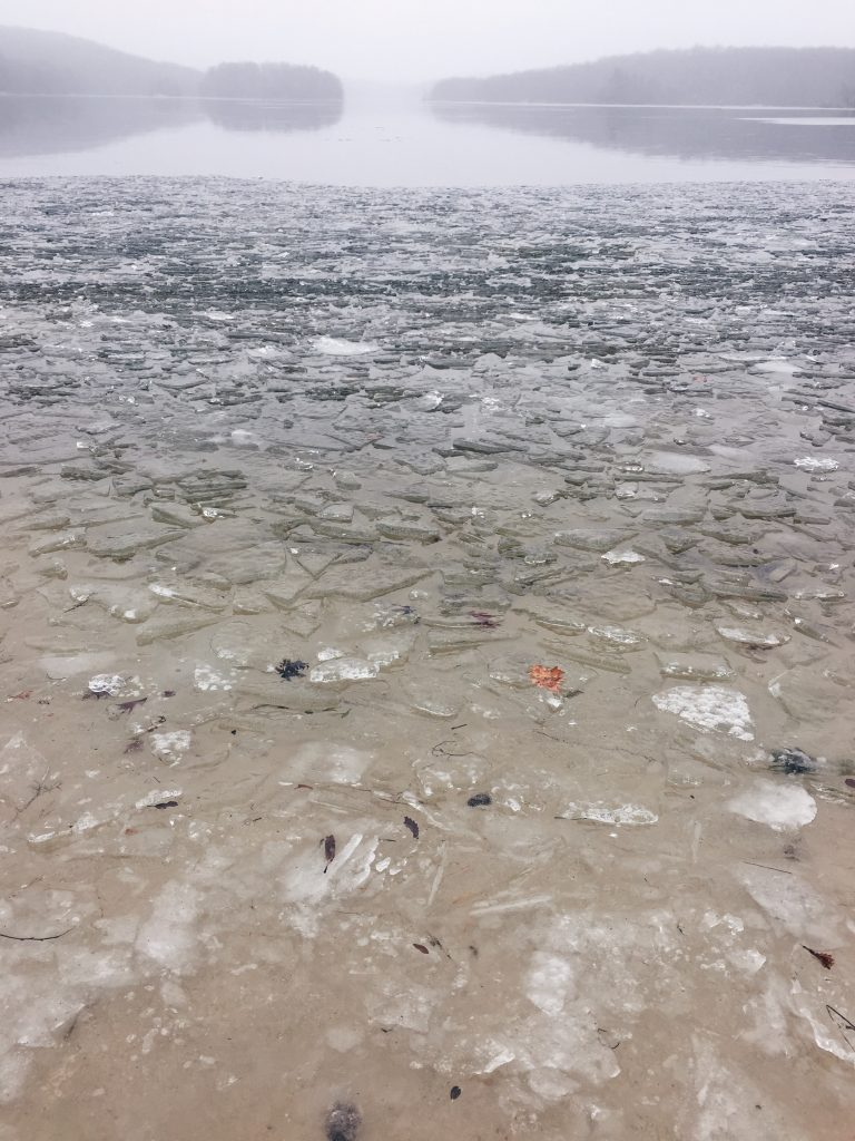 ice shards at shore